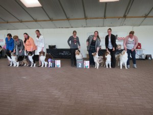 breeder group 1
